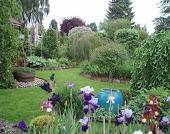Haven i Hinnerup - et besøg værd