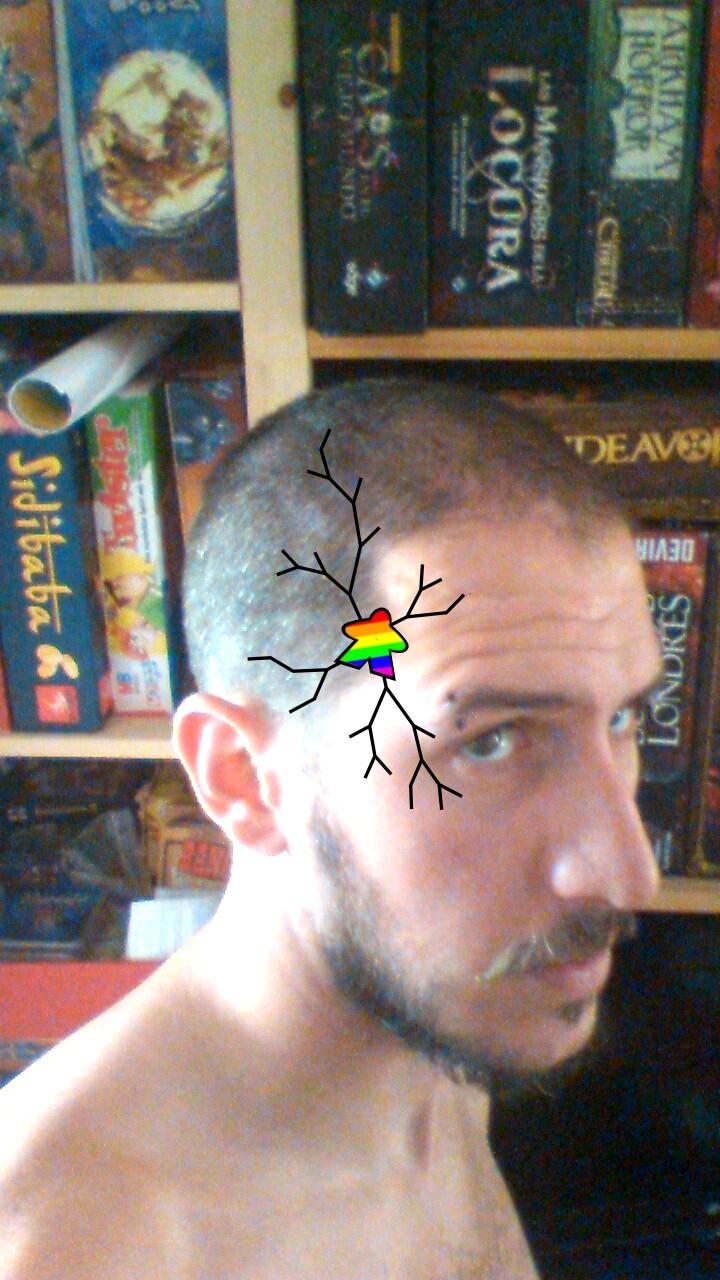 ... 2012 juegan los maricas con meeples arcoíris por supuesto me explico