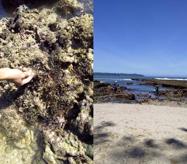 Suasana Pantai Karapyak Pangandaran
