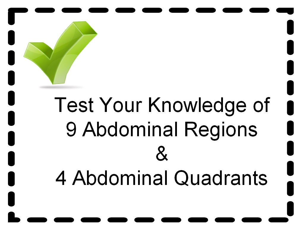 4 Quadrants of the Abdomen http://studentsurvive2thrive.blogspot.com/2012/02/free-medical-terminology-practice-test.html