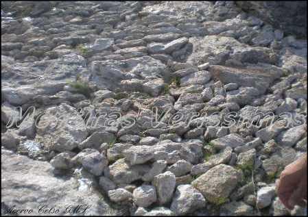 Visão geral do afloramento com as pedrinhas paridas