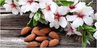 obat jerawat tiens, SMS 085793919595, spirulina obat jerawat tiens, makanan vitamin spirulina protein untuk obat jerawat