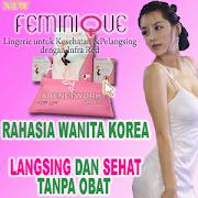 Feminique Pakaian Pelangsing