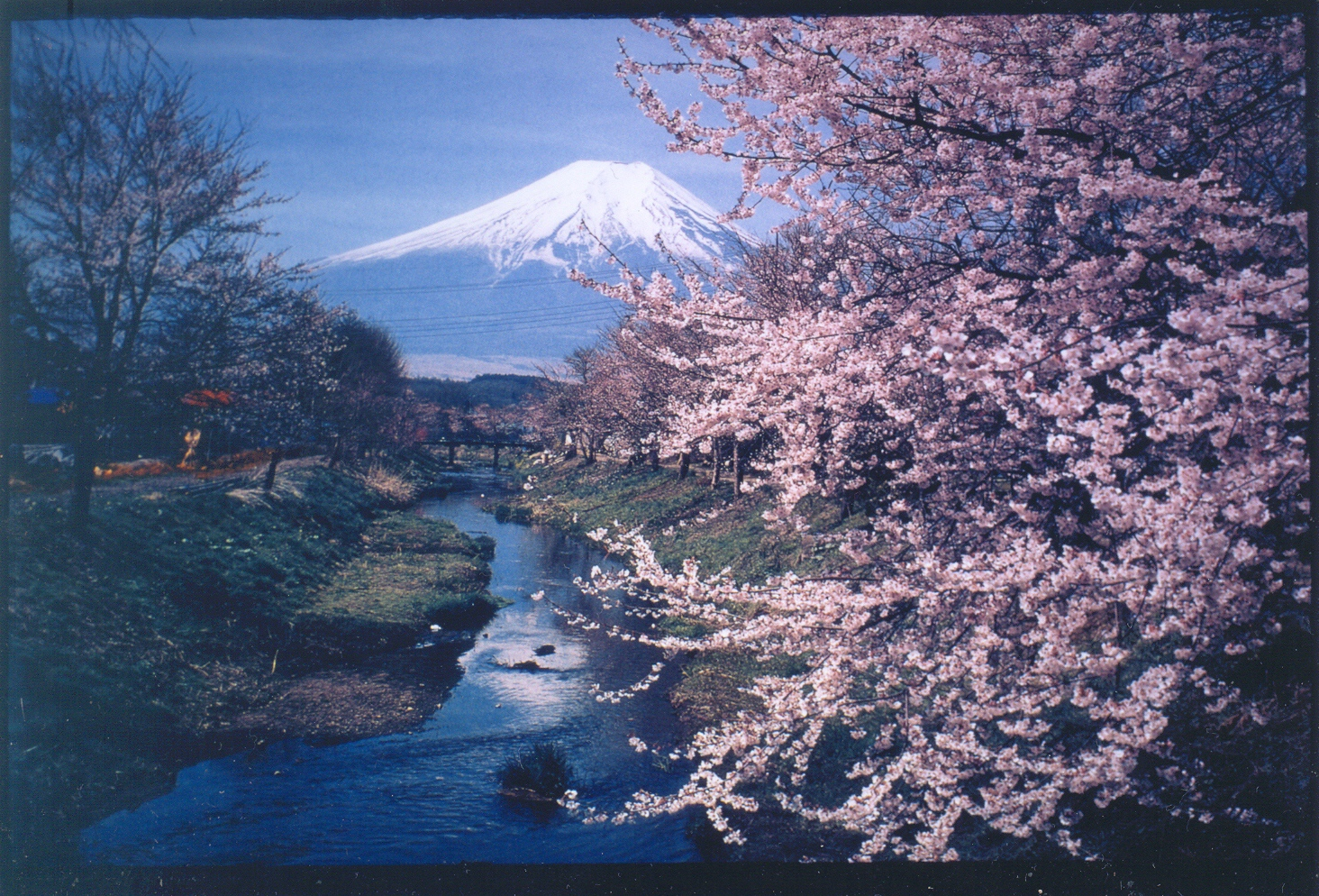 monte fuji japon