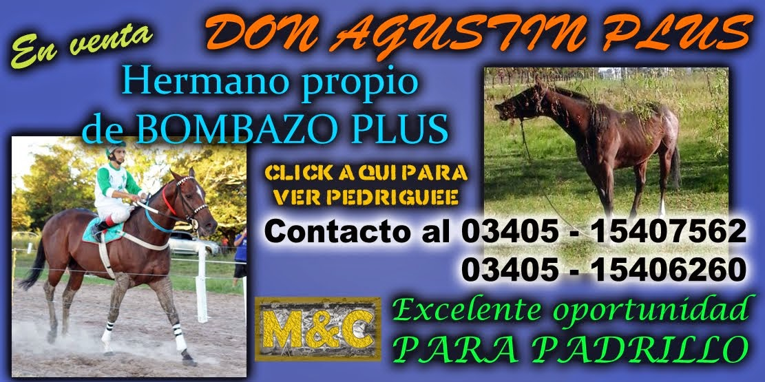 don agustin plus - 01/05/15