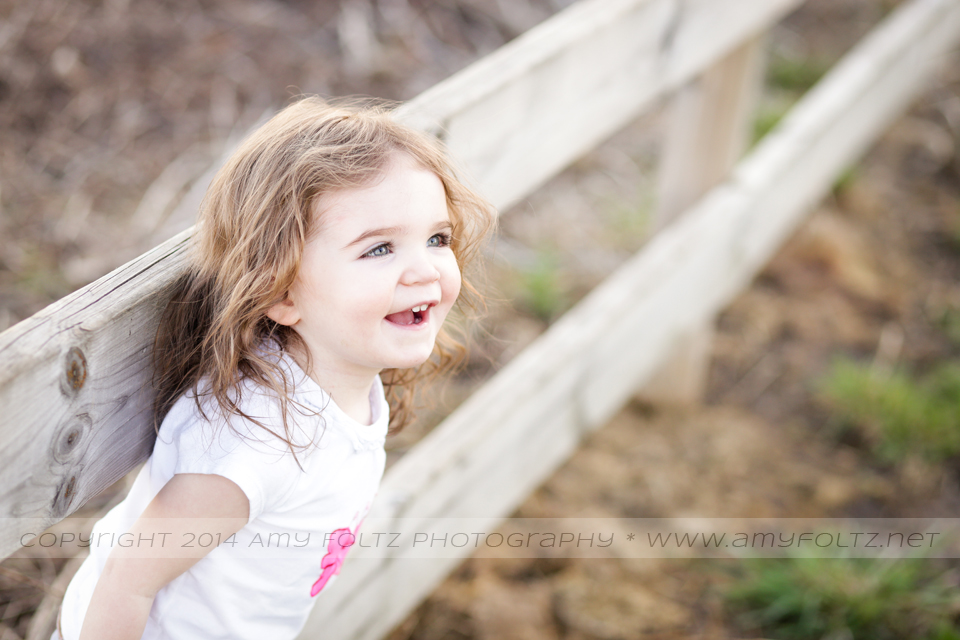 photo of a toddler girl sitting on a fence - Terre Haute photographer