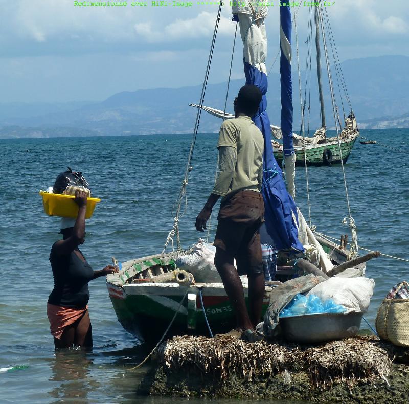 Dans le sillage de kallima ha ti aux multiples visages for Acheter une maison en haiti