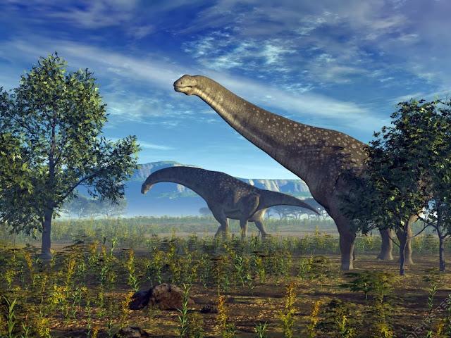 """<img src=""""http://4.bp.blogspot.com/-35fIem8KtPE/Uq8MbM_DQ7I/AAAAAAAAFms/WU-SgZOLvh0/s1600/eww.jpeg"""" alt=""""Dinosaurs animal wallpapers"""" />"""