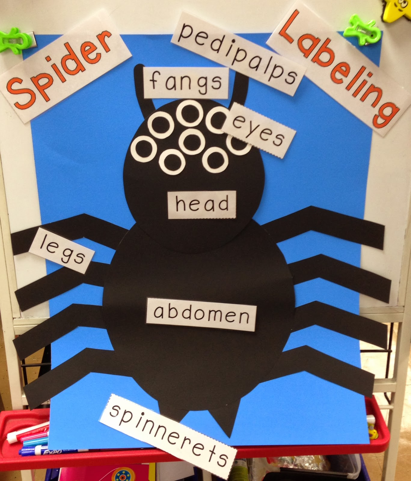 a spoonful of learning spider week