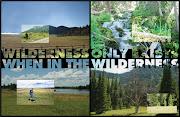 Of The Wilderness . Travis Alexander Portfolio