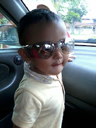 Muhammad Aqeef Danish