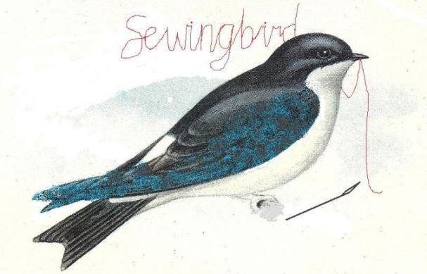 sewingbird