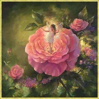 Keiju Ruusussa