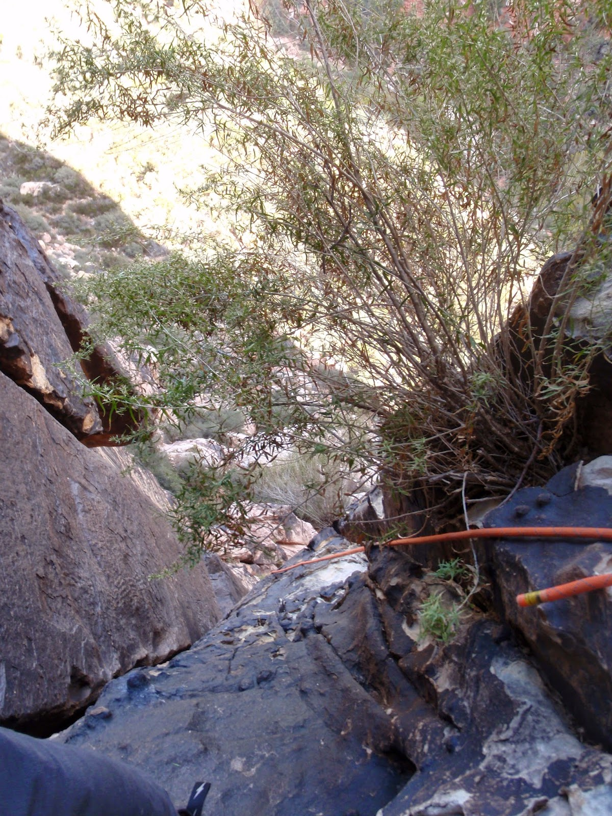 Cookie Monster Pitch 1, Pine Creek Canyon, Red Rock Canyon, Las Vegas