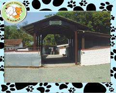 ONG Abrigo Animal