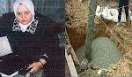 آية قرآنية توصل لاختراع خرسانة مقاومة للزلازل