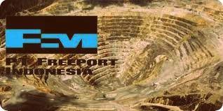PT Freeport Indonesia Diijinkan Ekspor Konsentrat Tembaga Sebesar 775 Ribu WMT hingga 2016
