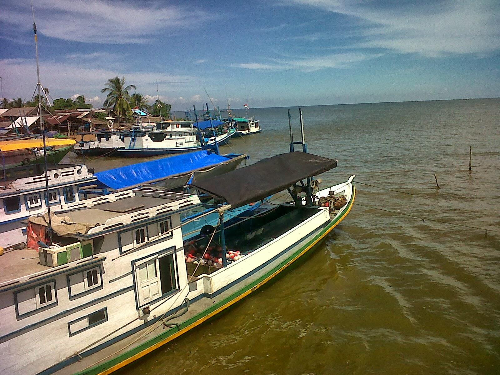 Survei Perhitungan Volume Produk Olahan Hasil Perikanan Skala Umkm Ukm Bumn Ikan Nila Dalam Rangka Pencapaian Indikator Kinerja Utama Direktorat Pengolahan Yaitu Sebesar 5 Juta Ton Pada Tahun 2013