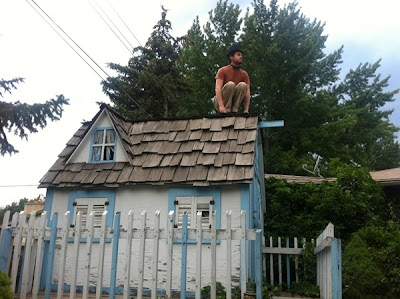 Owling Is the New Planking Seen On www.coolpicturegallery.us