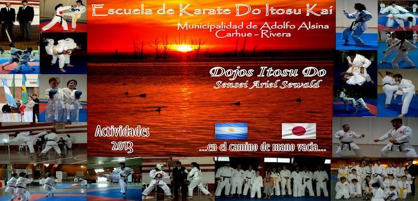 karate actividades 2013