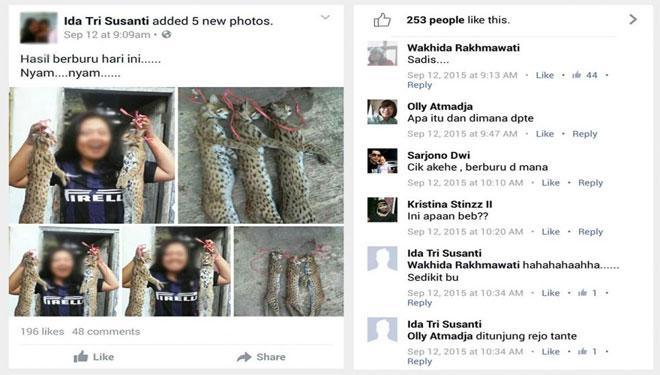 Mahasiswi Jember Bunuh Kucing Hutan