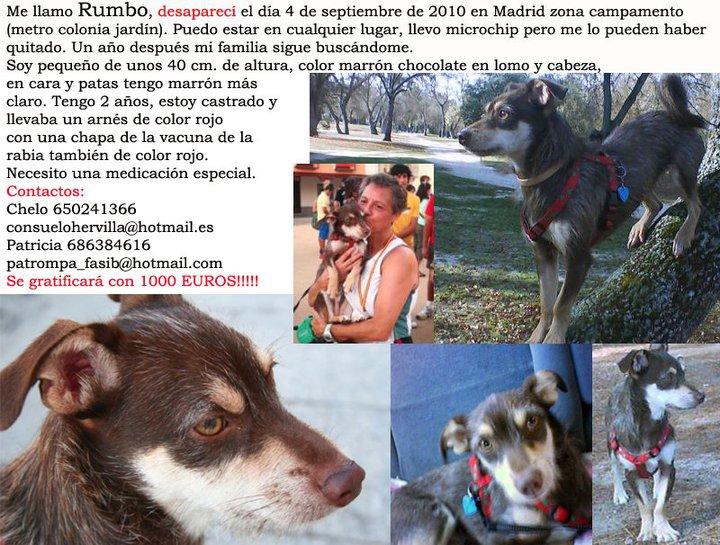 RUMBO, PERDIDO EN MADRID