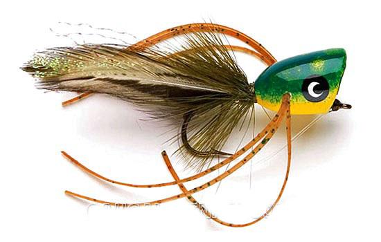 Chuẩn bị dụng cụ và mồi popper câu cá bass