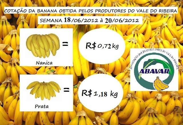 Cotação da Banana obtida pelos produtores do Vale do Ribeira