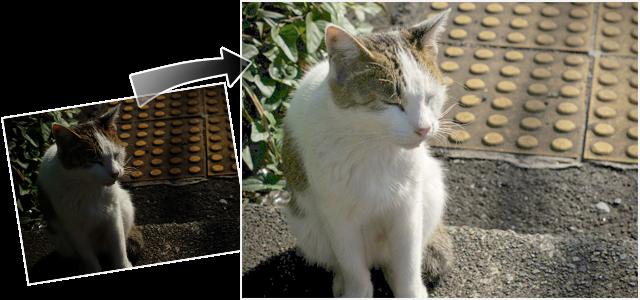 GIMP2の使い方 | 暗過ぎる失敗写真を明るく修整する