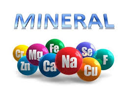mineral yang dibutuhkan tubuh dan sumbernya
