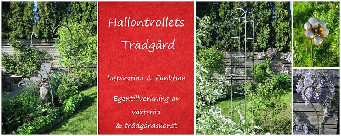 Hallontrollets design