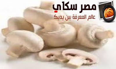 أطعمة هامة تخلصك من دهون البطن