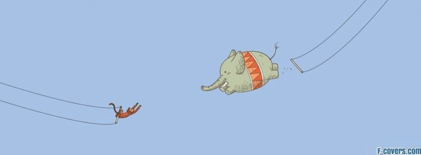 capas para facebook elefantes