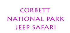 Corbett National Park Wildlife Safari