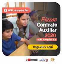 PLAZAS DE CONTRATO AUXILIAR 2020
