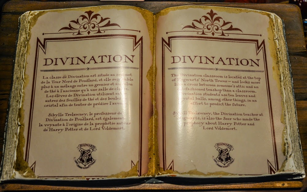 divination book