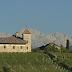 In Alto Adige il vigneto più costoso d'Italia