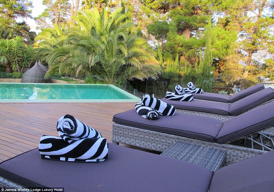 حمام سباحة خاص خارج الغرف
