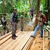 Policia Ambiental e Imac Fazem Apreensão de Madeiras