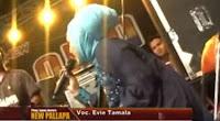 Kandas - Evie Tamala  New Pallapa mp3