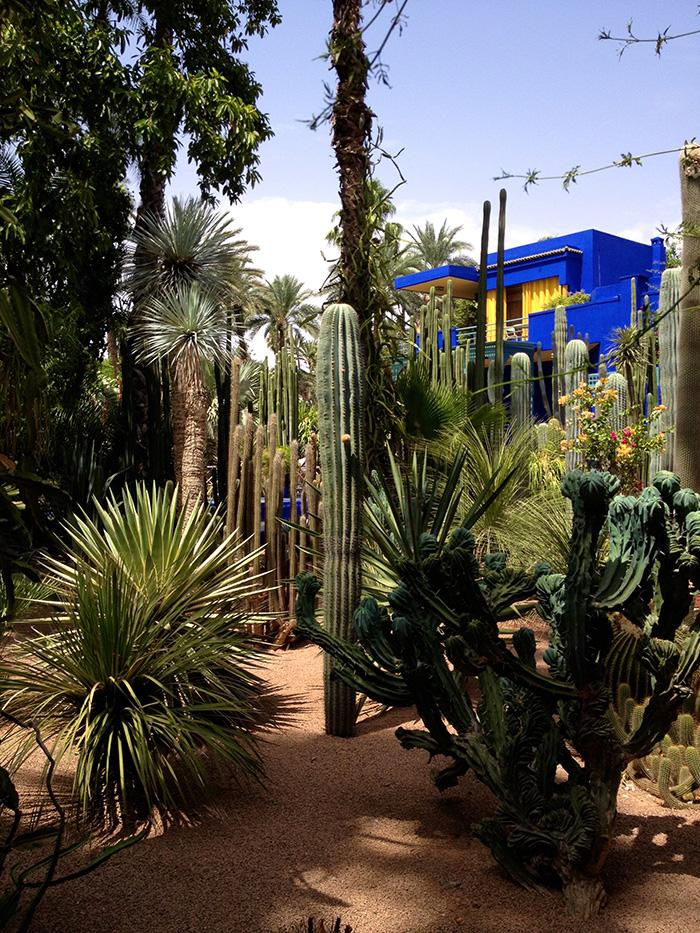 marrakech jardin