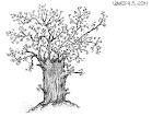 El árbol de las peras de la vida
