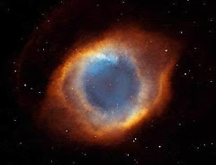 Cosmos Consciente