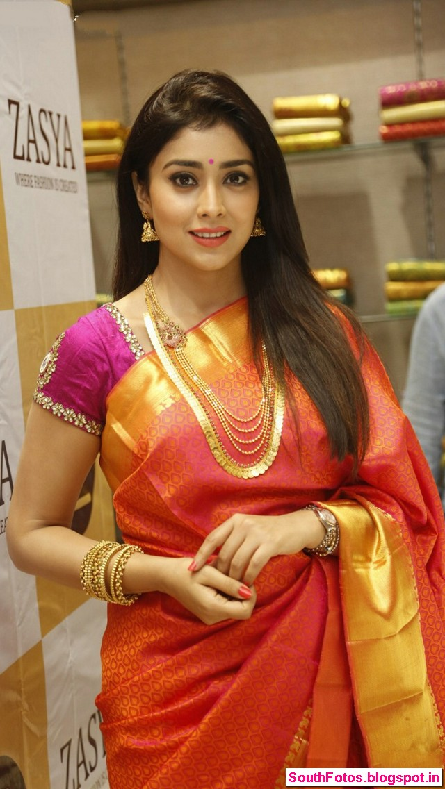 Shriya Saran Hot in Saree Wallpapers