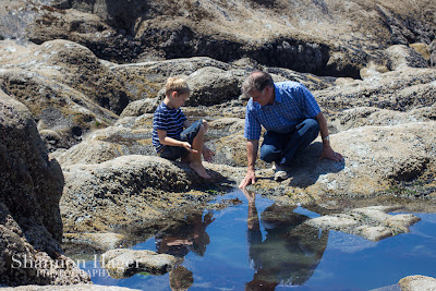 Shannon Hager Photography, Beach Portraits, Tidepools