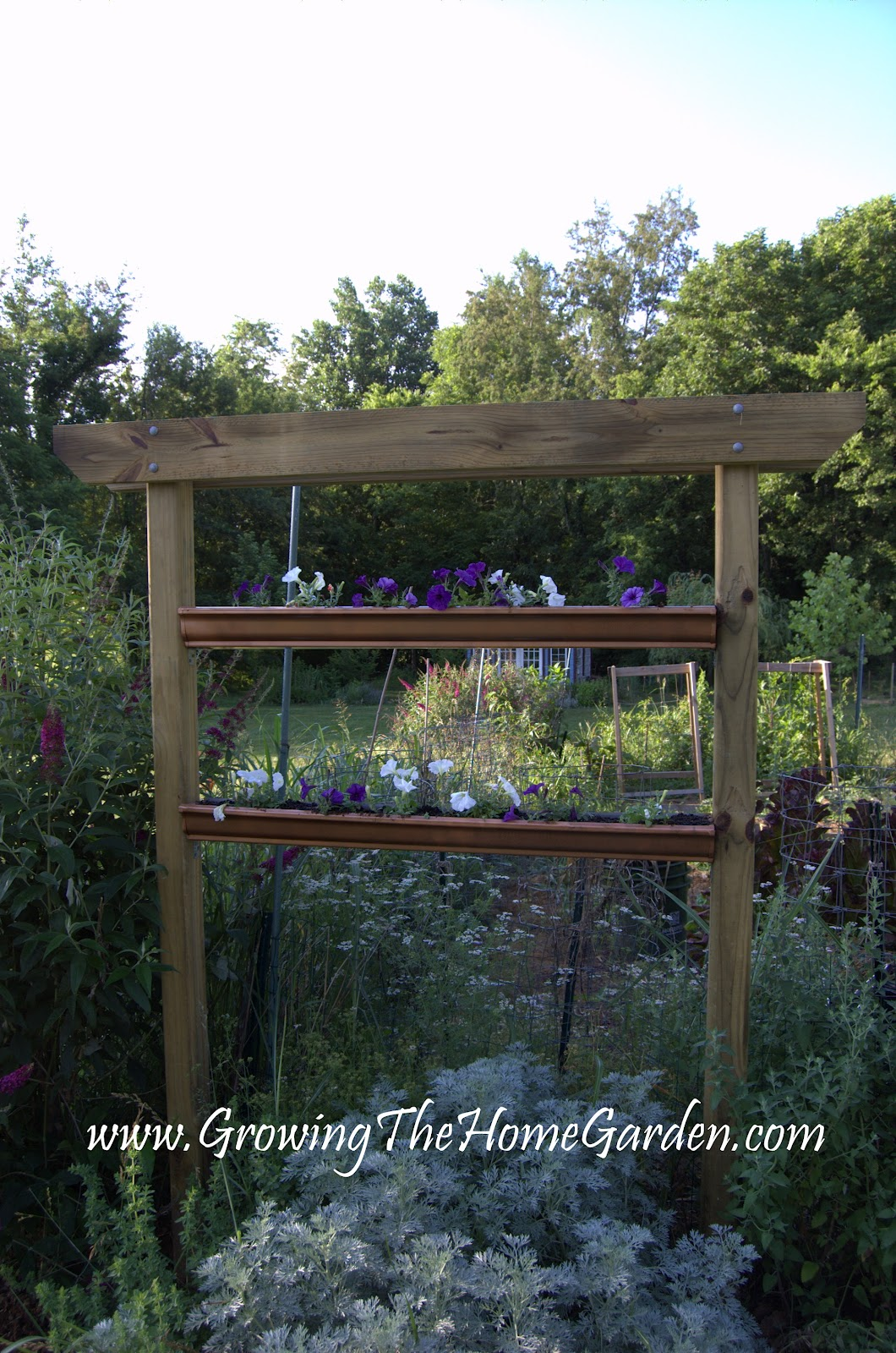 Growing The Home Garden: Gardening in the Home Landscape: May 2012