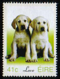 年度不明アイルランド ラブラドール・レトリーバーの切手