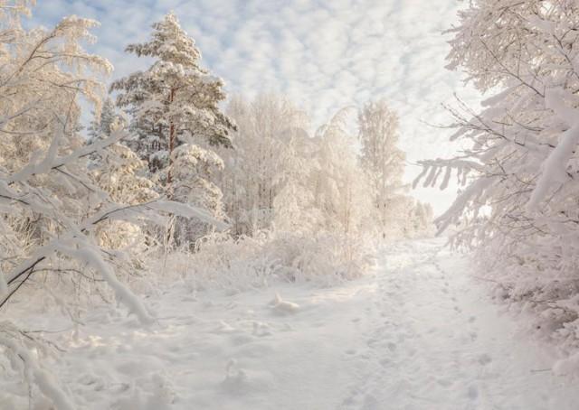 Karelian Isthmus, Russia - 19 Breathtaking Photos Of Winter Wonderlands Around The World
