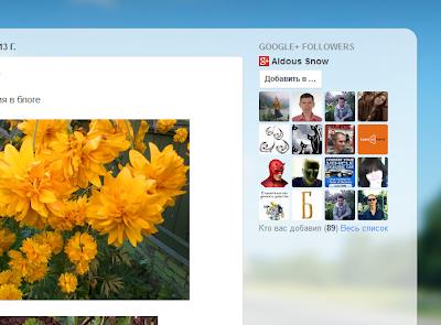 Гаджет подписчики Google+