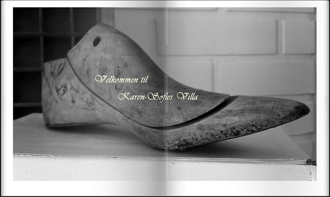 Karen-Sofies Villa